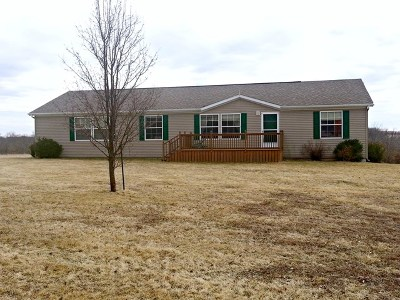 Brashear Single Family Home For Sale: 33199 Hornet Way