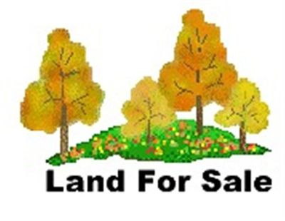 Sedalia MO Residential Lots & Land For Sale: $16,000