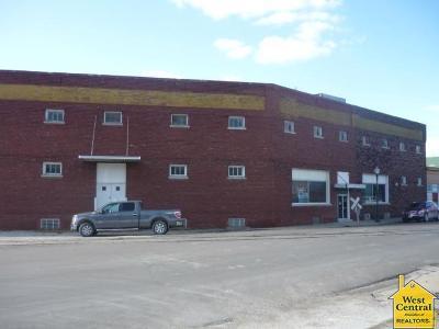 Clinton Commercial For Sale: 219 S Main St