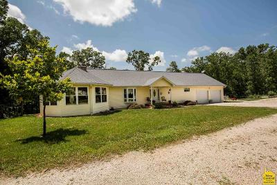 Benton County, Henry County, Hickory County, Saint Clair County Single Family Home For Sale: 19913 Dwyer Rd
