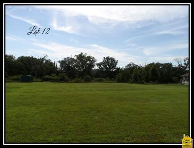 Osceola Residential Lots & Land For Sale: Xx Hwy Ww