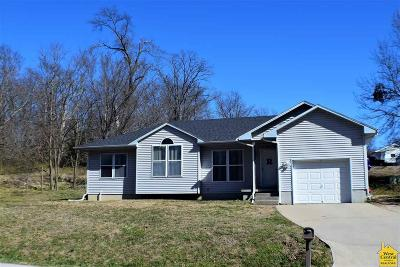 Clinton Single Family Home For Sale: 904 N Water St.