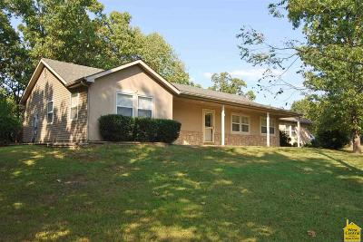 Benton County, Henry County, Hickory County, Saint Clair County Single Family Home For Sale: 27239 Isabella Lane