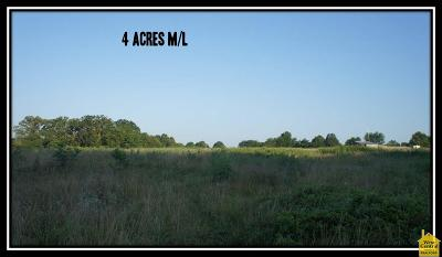 Osceola Residential Lots & Land For Sale: Xx N Of B Hwy