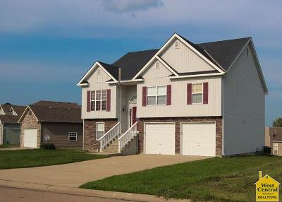 Warrensburg Single Family Home For Sale: 1219 Wildflower Rd