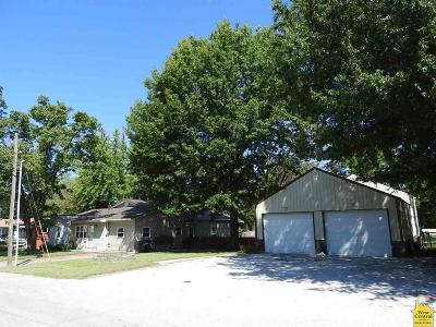 Henry County Single Family Home For Sale: 405 W Grandriver