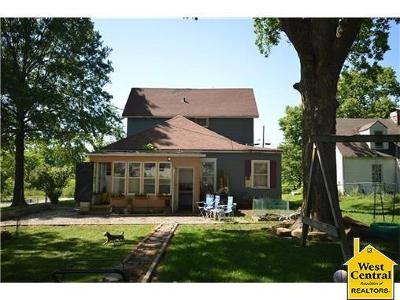 Henry County Single Family Home For Sale: 911 S Main Street