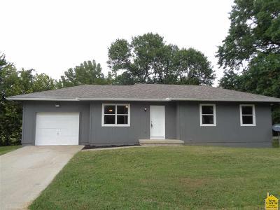Henry County Single Family Home For Sale: 719 E Grandriver