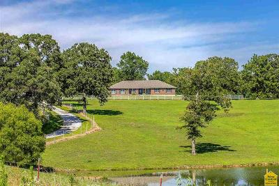 Benton County, Henry County, Hickory County, Saint Clair County Single Family Home For Sale: 33620 Hwy 83