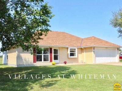Knob Noster Single Family Home For Sale: 140 SE 1171