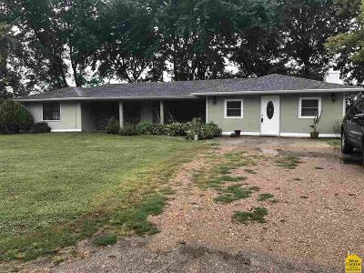 Smithton Single Family Home For Sale: 30576 Boonville Rd
