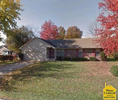 Henry County Single Family Home For Sale: 201 S Vansant
