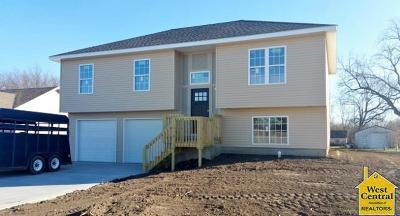 Sedalia MO Single Family Home For Sale: $169,900