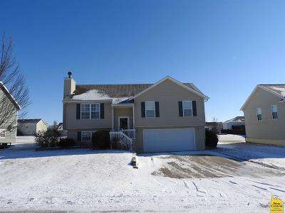 Knob Noster Single Family Home For Sale: 159 SE 1171