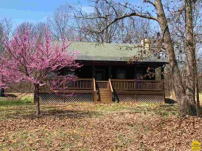 Benton County, Henry County, Hickory County, Saint Clair County Single Family Home For Sale: 39233 Hwy K