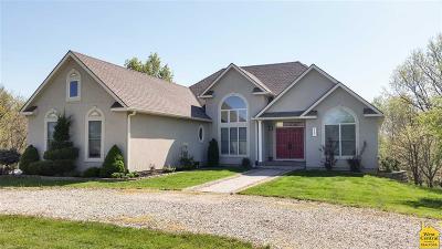 Warrensburg Single Family Home For Sale: 247 NE 71st Rd