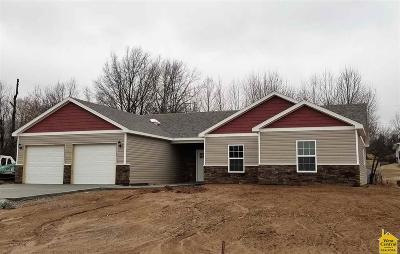 Warrensburg Single Family Home For Sale: 234 SE 141