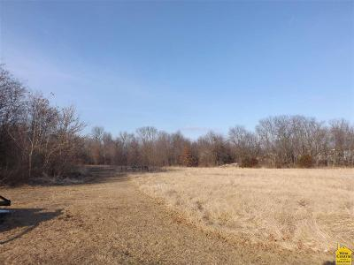 Sedalia MO Residential Lots & Land For Sale: $250,000