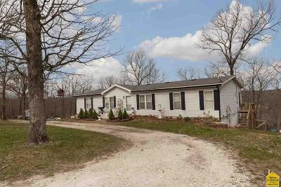 Benton County, Henry County, Hickory County, Saint Clair County Single Family Home For Sale: 20449 Cedar Gate Dr