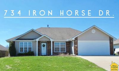 Johnson County Single Family Home For Sale: 734 Iron Horse Dr