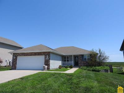 Johnson County Single Family Home For Sale: 1211 Wildflower