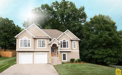 Johnson County Single Family Home For Sale: 101 N Deerfield Dr.