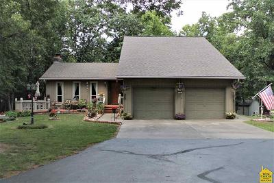 Johnson County Single Family Home For Sale: 22 NW 225 Road