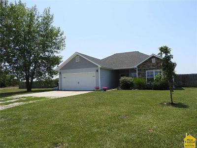 Knob Noster Single Family Home For Sale: 398 SE 981st Rd