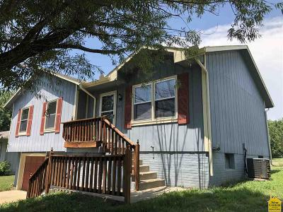 Clinton Single Family Home For Sale: 805 Hormeyer St.