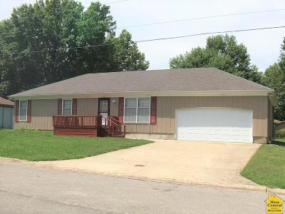 Clinton Single Family Home For Sale: 1303 S Cherry