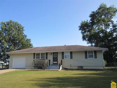 Clinton Single Family Home For Sale: 908 E Willow St.