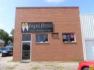 Osceola Commercial For Sale: 570 3rd St