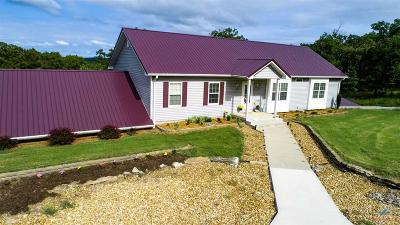 Benton County, Henry County, Hickory County, Saint Clair County Single Family Home For Sale: 32472 Berry Bend Ave