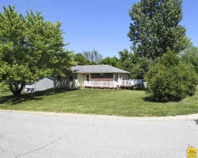 Johnson County Single Family Home For Sale: 1430 Woodlawn Drive