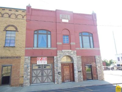 Commercial For Sale: 216 S Washington