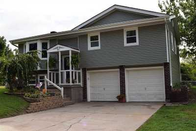 Sedalia MO Single Family Home For Sale: $140,000