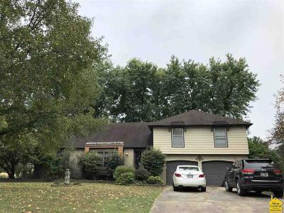 Clinton Single Family Home For Sale: 2102 Arcadia Dr.
