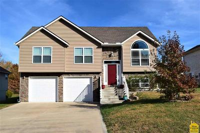 Johnson County Single Family Home For Sale: 303 Talon Crt