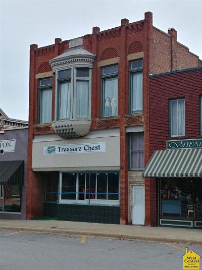 Clinton Commercial For Sale: 135 W Franklin