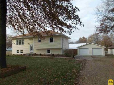 Sedalia MO Single Family Home For Sale: $158,000