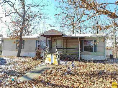 Benton County, Henry County, Hickory County, Saint Clair County Single Family Home For Sale: Lots 30-33, Block 29 Twin Oaks