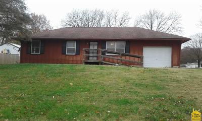 Henry County Single Family Home For Sale: 230 S County Line