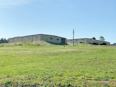Warsaw Commercial For Sale: 19098 Dwyer Rd