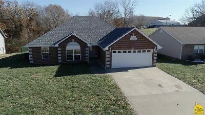Warrensburg, Knob Noster Single Family Home For Sale: 505 Fountain Hills Dr
