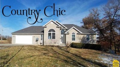 Knob Noster Single Family Home For Sale: 1055 NE E Highway