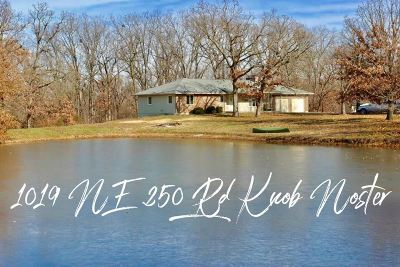 Knob Noster Single Family Home For Sale: 1019 NE 250