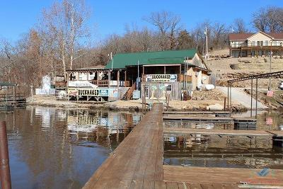 Lincoln Commercial For Sale: 29580 Water's Edge Road