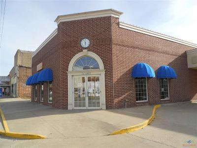 Windsor Commercial For Sale: 125 S Main