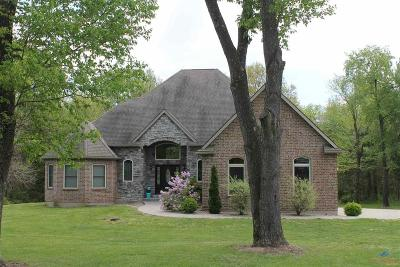 Sedalia MO Single Family Home For Sale: $350,000