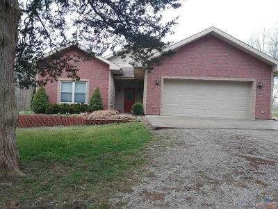 Henry County Single Family Home For Sale: 103 S Deer Creek Dr